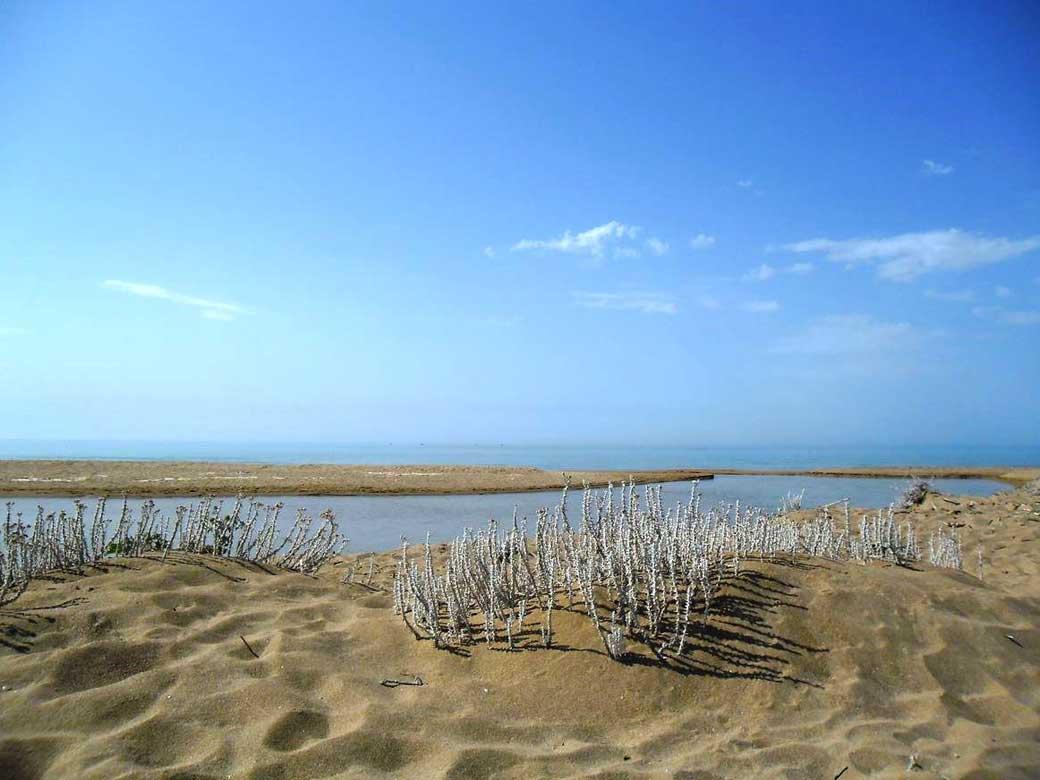 Spiaggia foce del fiume Belice