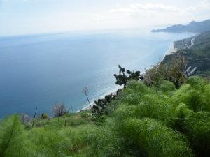 SICILIA AL MARE