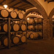Luxury winery resort Castelbuono_wine cellar