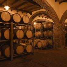 Luxury winery resort Castelbuono_wine cellar