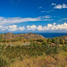 Luxury winery resort Castelbuono_view