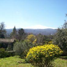 B&B Etna trekking_garden