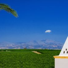 Winery resort Marsala_view