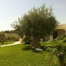 Residence Scala dei Turchi